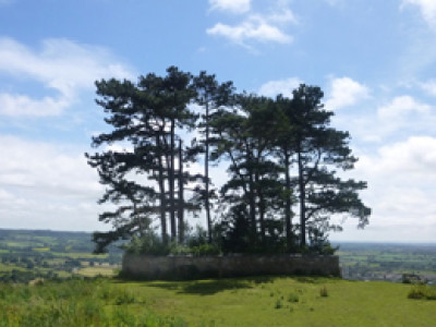 Cotswold Way view