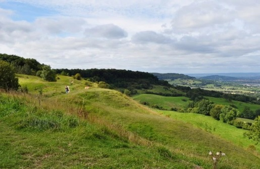 Cotswold Walking Co Birdlip Hill view